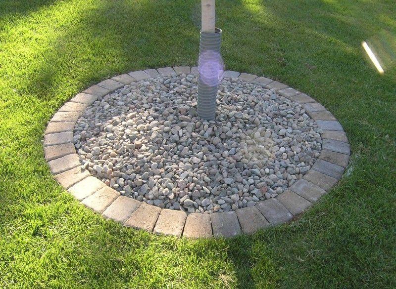 Stone Edging Around Trees