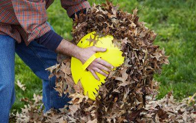 5 Best Leaf Scoops
