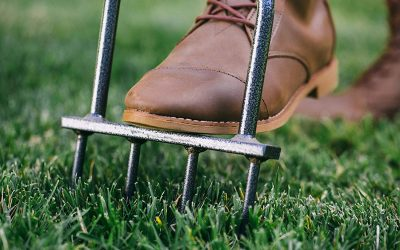 4 Best Manual Lawn Aerators